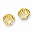 Polished Shell Post Earrings in 14K Yellow Gold