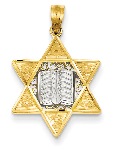 Star of David Torah Pendant, 14K Two-Tone Gold