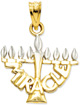 Miracle Menorah Jewelry Pendant, 14K Gold