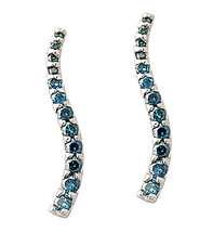1 Carat Blue Diamond Earrings (Earrings, Apples of Gold)