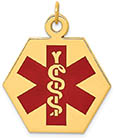 14K Gold Hexagon Medical ID Necklace Pendant with Red Enamel Caduceus Symbol