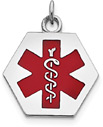 Hexagon Medical ID Necklace with Red Enamel in Sterling Silver