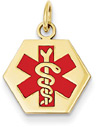 Hexagon-Shaped 14K Gold Medical ID Alert Necklace
