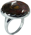 Large Round Pietersite Ring in Silver