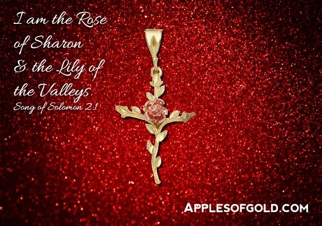 03-30-2013 rose of sharon cross